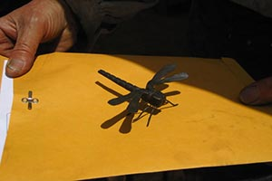 A dragonfly by Mark, the Coloma Blacksmith.
